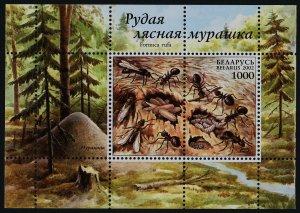 Belarus 431b MNH Ants, Trees