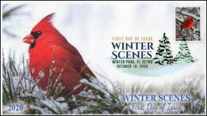 20-243, 2020, Winter Scenes, FDC, Digital Color Postmark, Cardinal