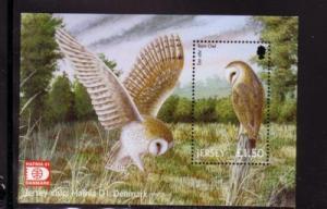 Jersey Sc 1003a 2001 Barn Owl HAFNIA stamp souvenir sheet mint NH