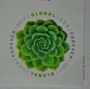 United States 2017 forever stamp Global succulent