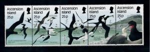 [52355] Ascension 1987 Birds Vögel Oiseaux Ucelli  MNH