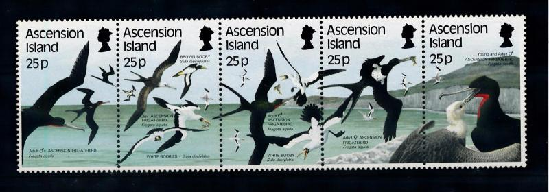 [52355] Ascension 1987 Birds Vögel Oiseaux Ucelli  MNH