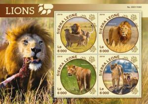 Sierra Leone MNH S/S Lions Wild Cats 2016 4 Stamps