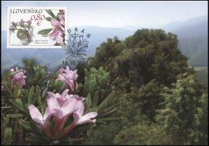 Slovakia. 2010. Muranska Plain - Daphne Arbuscula (Mint) Maximum Card