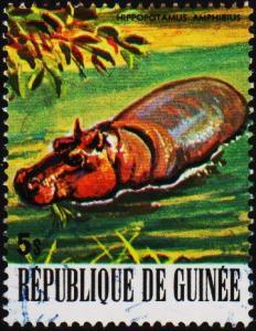 Guinea. 1977 5s  S.G.965 Fine Used