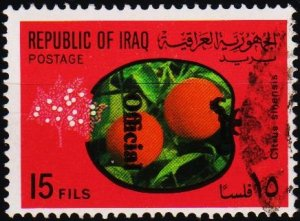 Iraq. 1971 15f (Official) S.G.O989 Fine Used