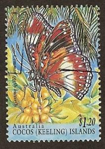 Cocos Island #303 Butterfly PM