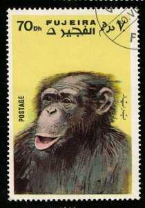 Apes and Monkeys, 70 Dh, 1971 (T-6813)