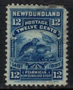 Newfoundland #69  CV $15.00  minor defects