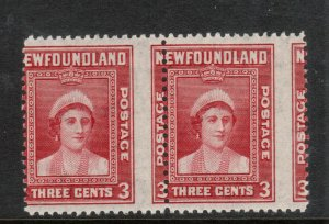 Newfoundland #255 Mint Never Hinged Rare Misperf Pair