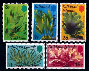 [65191] Falkland Islands 1979 Flora Plants Seawee  MNH