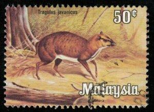 Animal, 50 cents (T-5137)