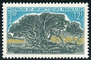 FSAT Scott 27 (SG29) Unused VFVLHOG - 1966 Phylica Trees - SCV $21.00