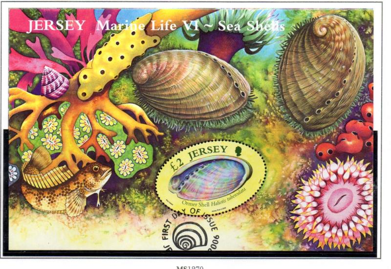 Jersey Sc 1213 2006 Sea Shells stamp sheet used