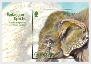 2010 Guernsey Asian Elephant SS  (Scott 1075) MNH