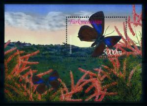 [98841] Turkmenistan 2002 Insects Butterflies Souvenir Sheet MNH