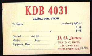 QSL QSO RADIO CARD Georgia Boll Weevil/KDB 4031, Thomaston, GA (Q1562)