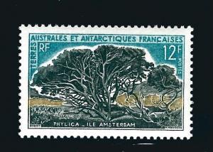 FSAT Antarctic Phylica trees issue (Scott #27) VF MNH Cat $22.50 remier!
