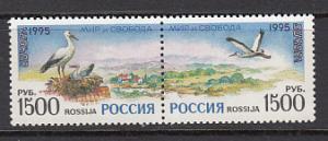 Russia 6294a  1995 Europa Birds Pair MNH