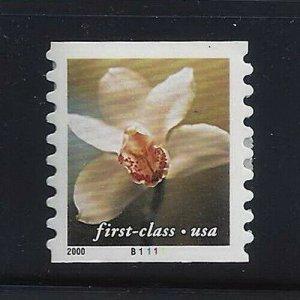 3464 PNC Coil Single Flowers Mint NH
