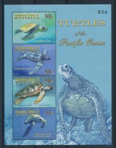 [34913] Micronesia 2009 Marine Life Turtles MNH Sheet