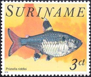 Surinam # 506 mnh ~ 3¢ Fish - Pristella riddei