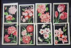 Match Box Labels! flora flower flowers nature russia sssr russland GJ7