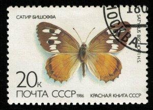 Butterfly (TS-2118)
