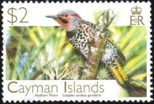 Cayman Islands 979 - Used - $2 Northern Flicker (2006) (cv $5.00)