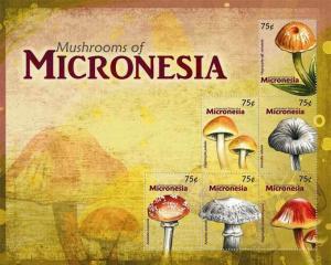 Micronesia - Mushrooms - 6 Stamp  Sheet MIC1004H