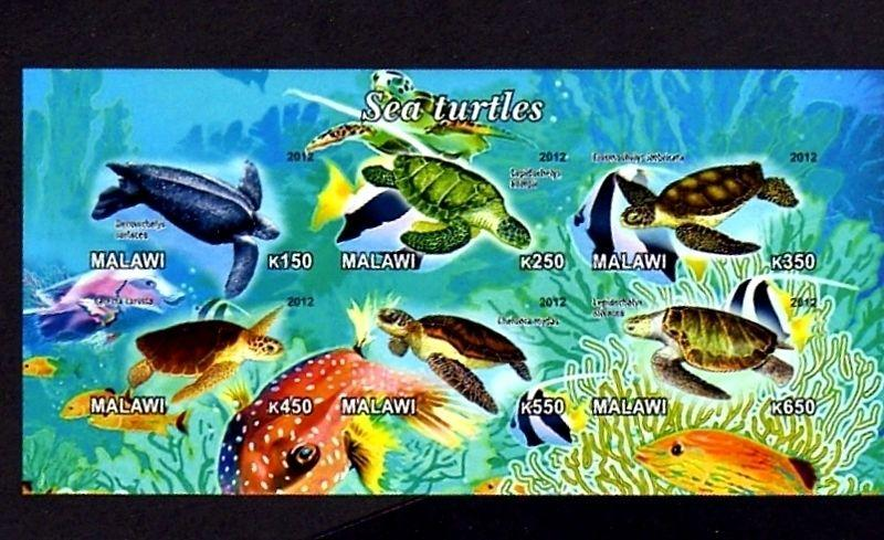 MALAWI - 2012 - TURTLE - SEA TURTLES - GREEN - HAWKSBILL ++ MINT IMPERF S/SHEET!