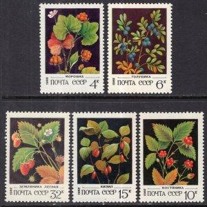 Russia 5023-5027 Berries MNH VF
