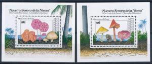 [68739] Nevis 1991 Mushrooms Pilze Champignons 2 Sheets MNH