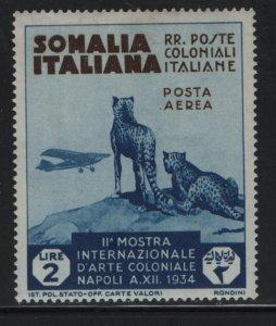 SOMALIA, C6, HINGED, 1934, CHEETAHS