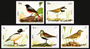 Fujeira Michel #1356-1360 set/5 mnh - 1972 Birds - plover  skylark etc