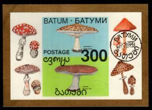 Georgia - Batum 1994 Cinderella Souvenir Sheet (Mushrooms)