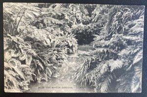 1906 Eltham England Real Postcard Cover To Waterford Winter Gardens Avery Hills