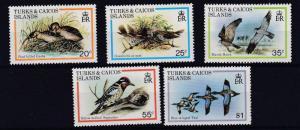TURKS & CAICOS  1979  S G  425 - 29   BIRDS  SET   MNH