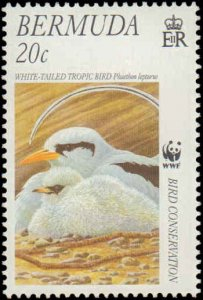 Bermuda #798-801, Complete Set(4), 2001, Birds, World Wildlife Fund, Never Hi...