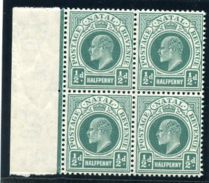 Natal 1904 KEVII ½d blue-green block of four superb MNH. SG 146. Sc 101.
