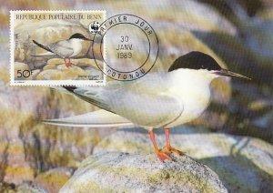 Benin 1989 Maxicard Sc #659 50fr Roseate tern WWF