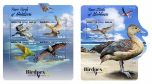 Z08 IMPERF MLD171003ab Maldives 2017 Rare birds MNH ** Postfrisch