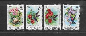 BIRDS - MONTSERRAT #497-500  MNH