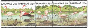 Bahamas Flamingos Strip of (5) of 1982, Scott 509 MNH