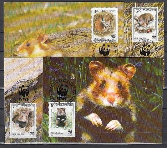 Bulgaria, Scott cat. 3831-3834. W.W.F. issue showing Hamsters on 4 Max. Cards