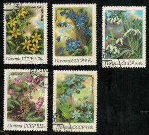 Flowers 1983 (4260-T)