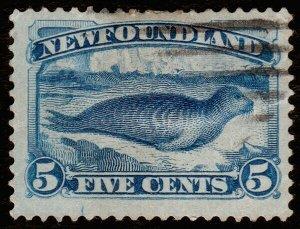 Newfoundland Scott 55 (1894) Used F, CV $6.50 C