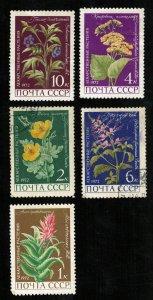 Flowers (2818-T)