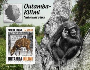 SIERRA LEONE - 2020 - Outamba-Kilimi Nat.Park.-Perf Souv Sheet-Mint Never Hinged