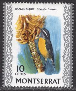 MONTSERRAT SCOTT 236